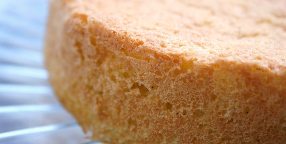 The Difference Between Genoise And Sponge Cake Is That
