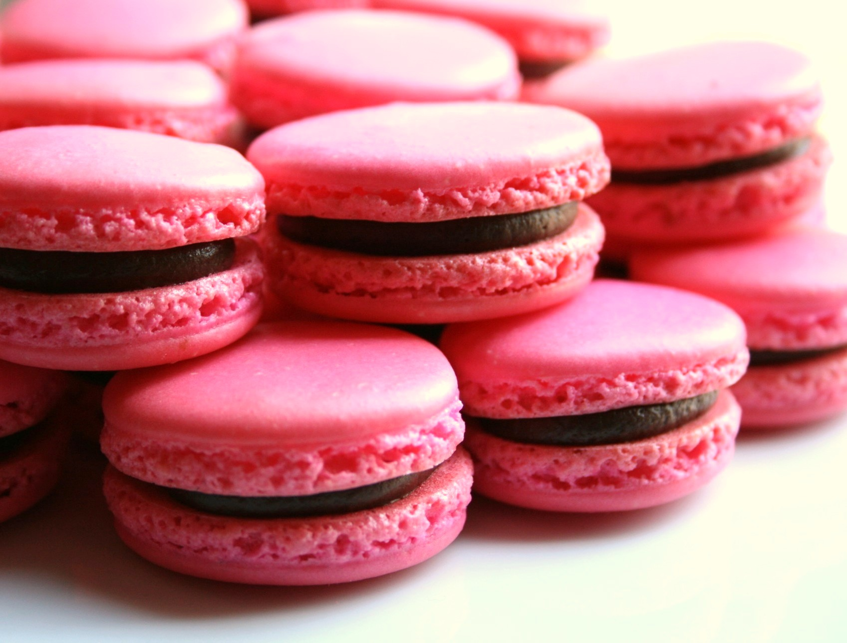 Anniversary Rose Macarons A Simplified Macaron How To